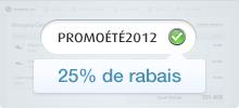 Promotion System